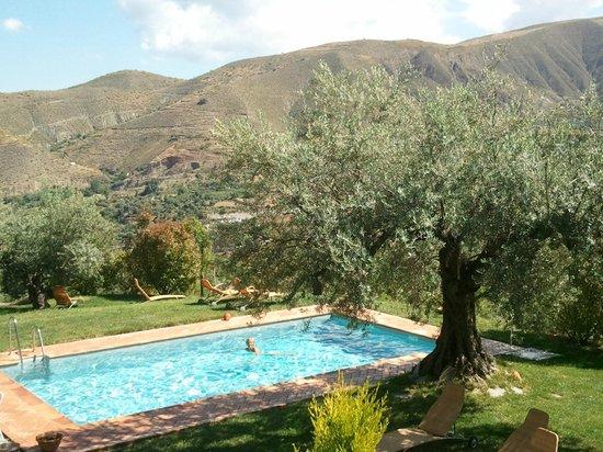 La Almunia del Valle : Area de piscina