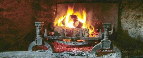 Waterman's Arms: Open Fire in Bar