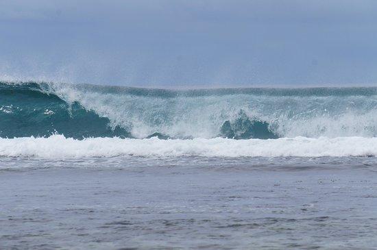 Surfers Beach Restaurant: поэтому и surfers beach