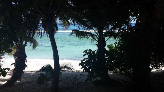 Surfers Beach Restaurant: вид с терассы