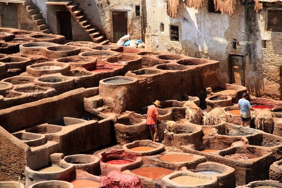 Tour in Marocco : conciatori di pelli a Fes