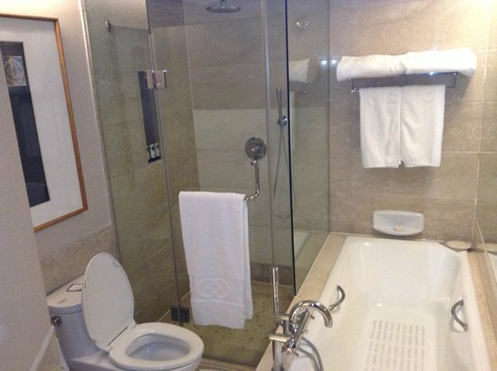 Sofitel Xian on Renmin Square : the shower cubicle , you have to navigate past the pot