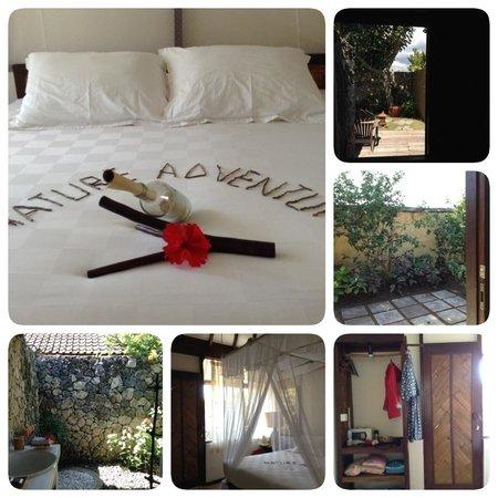 Naya Gawana Resort & Spa : standard room