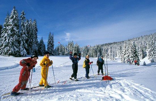 Vacances Popinns - Les Myrtilles : Activités - ski