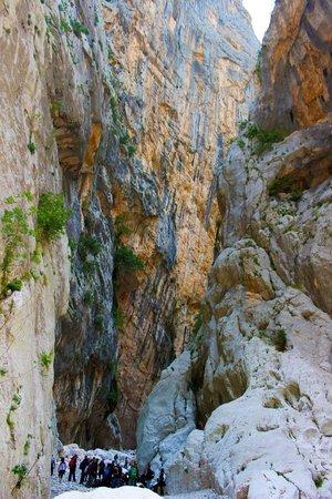 Agriturismo Rifugio Gorroppu : Canyon Gorropu