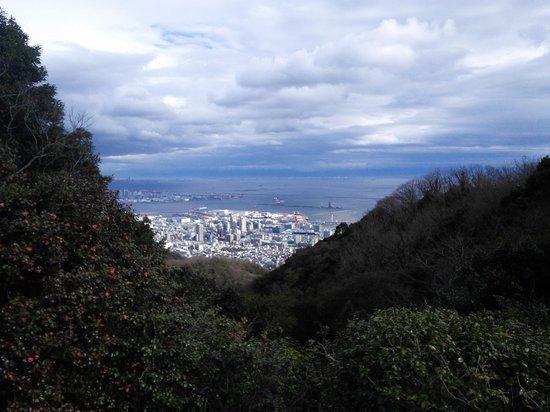 ANA Crowne Plaza Kobe: И ещё не много вида на Кобе с гор.
