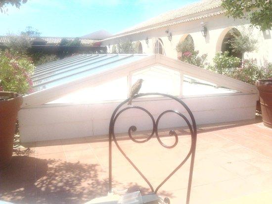 Vila Galé Albacora : Vista Hotel 2