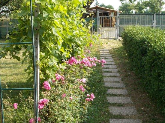 Cascina Folletto: giardino