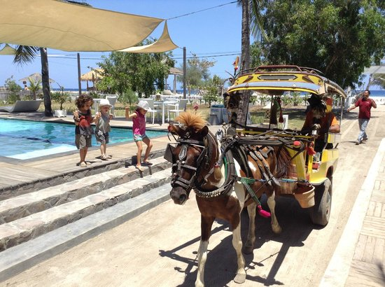 Gili Eco Villas: Picking up kids for Chidomo ride, they loved it