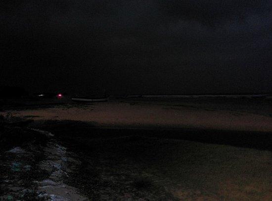 Zeebop by the Sea: Dusk at Utorda beach