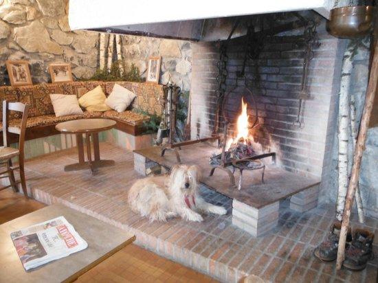Residence La Souleille des Lannes : Séjour