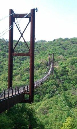 Osaka Prefecture Parks: こんな大きい吊り橋とはおもわなかったです。