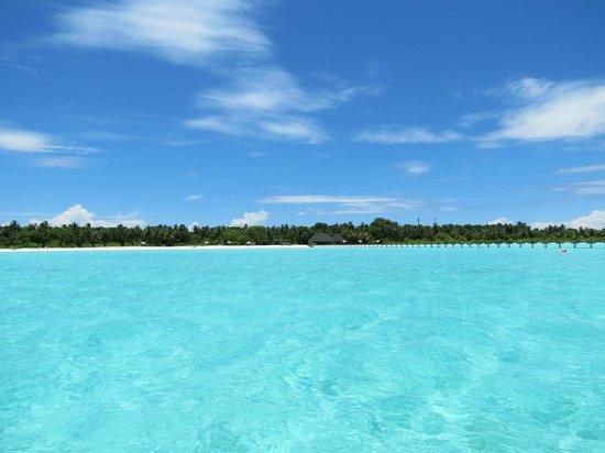 Holiday Island Resort & Spa : вид на остров с воды