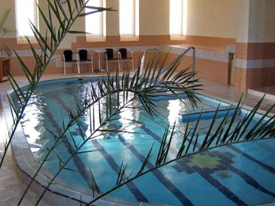 Garni hotel Prezident: Indoor pool