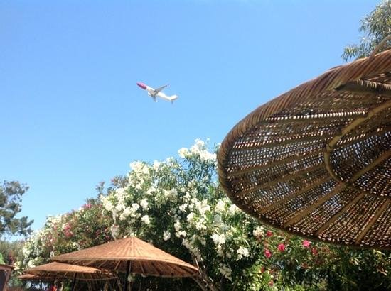 Vallian Village Hotel: another plane
