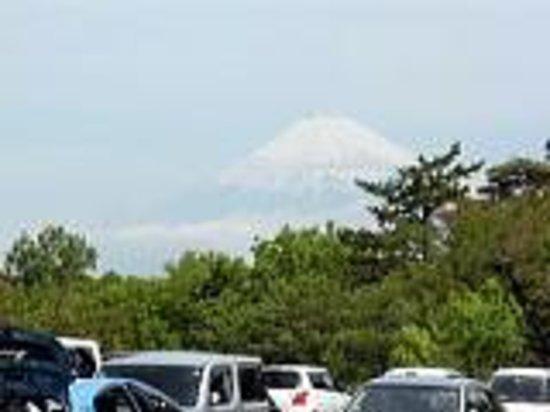 Laforet Shuzenji: 富士山を望む