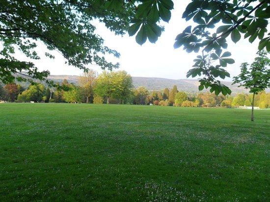Aberdare Park: Lush' Greenery