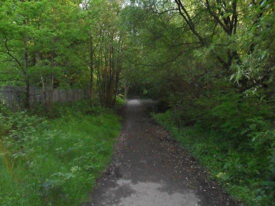 Aberdare Park