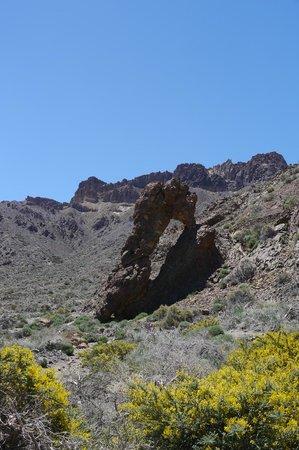 Vincci Seleccion La Plantacion del Sur: Teidi National Park