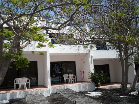 Ole Olivina Lanzarote: partie bungalow