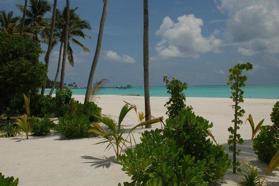 Atmosphere Kanifushi Maldives: Zimmer Blick