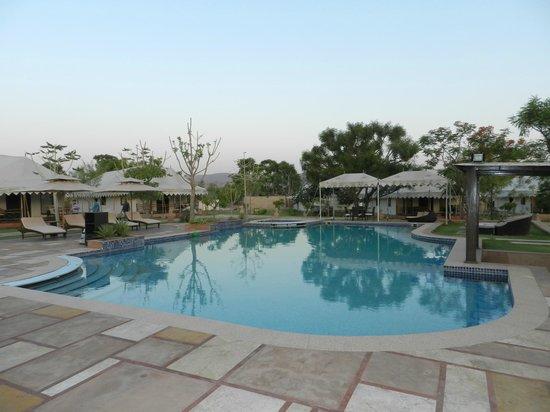 The Greenhouse Resort: Piscine
