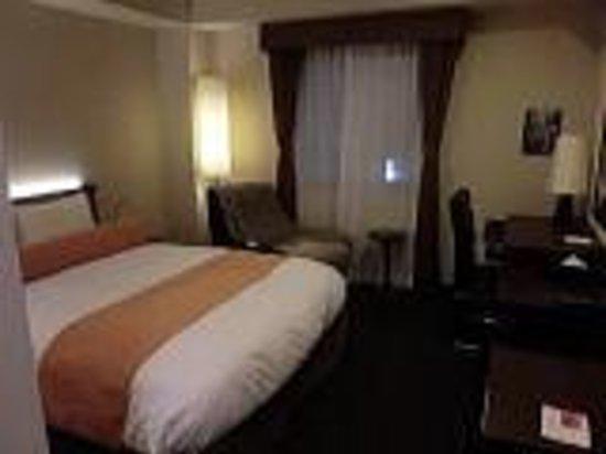 Hotel Tozan Comfort Odawara : 部屋