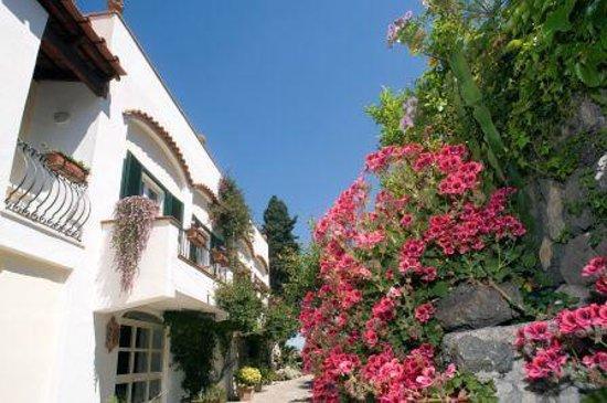 Hotel Villa Melodie: vista su giardino