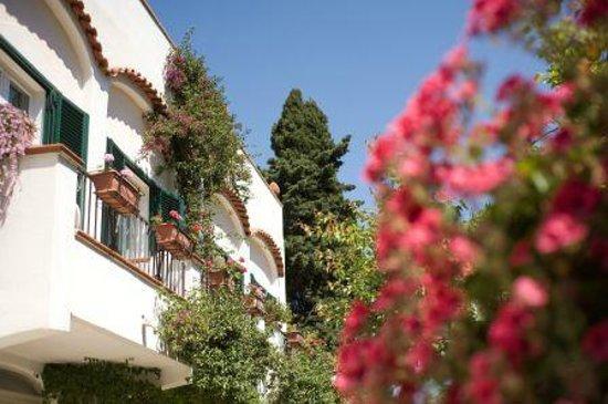 Hotel Villa Melodie: vista giardino