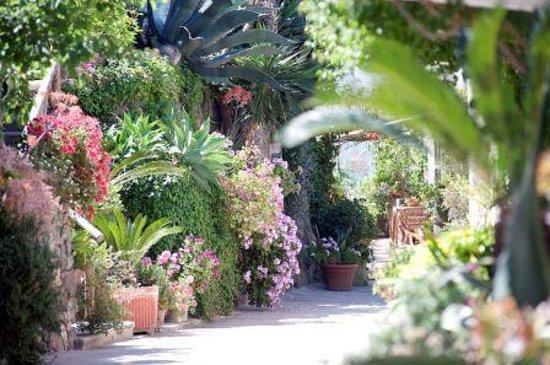 Hotel Villa Melodie: giardino