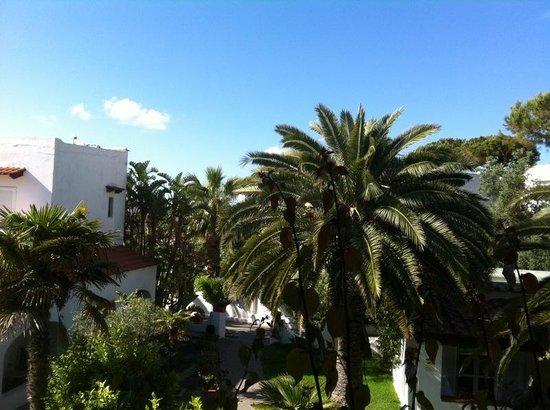 Hotel Terme Royal Palm: royal palm