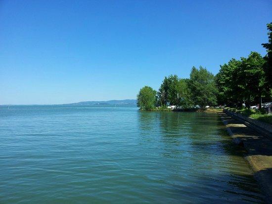 Lago Trasimeno: dettaglio lago