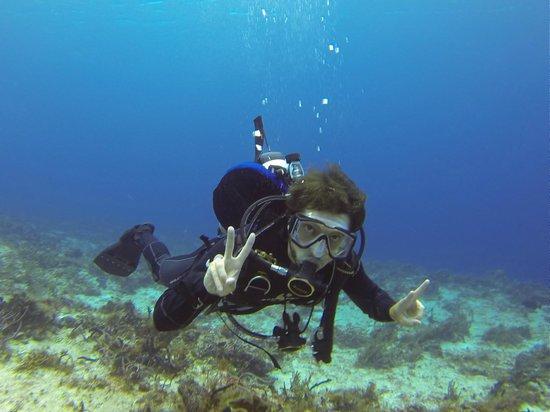 Felisa III Diving: Cool