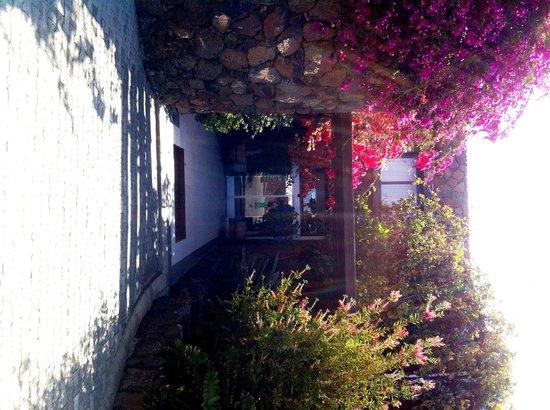 Hotel Villa Vik: Eingang