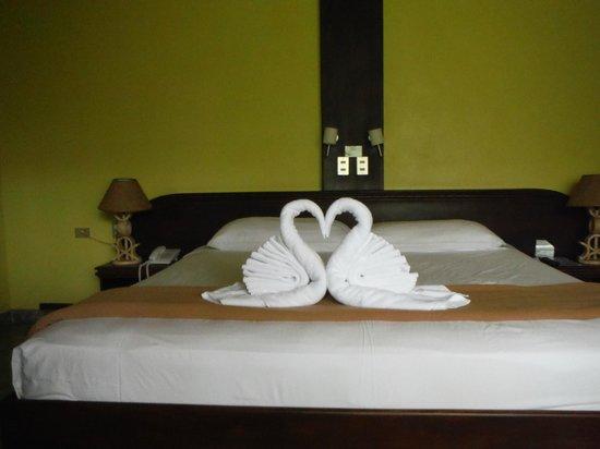 Volcano Lodge & Springs: daily towel art