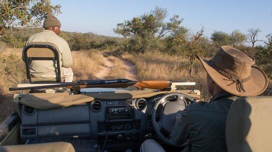Pondoro Game Lodge: On Safari