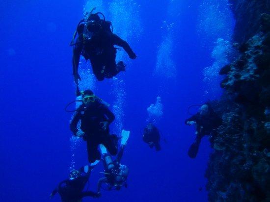 Buceo Isla de Pascua : azul de pascua