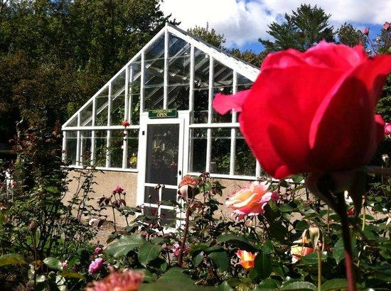 Fuller Gardens: Our greenhouse showcases hundreds of flowers
