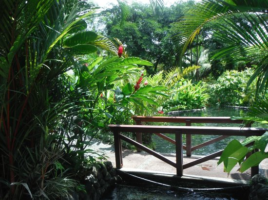 Tabacon Hot Springs: one of the bridges