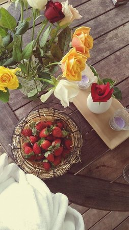 The Falls Montville: strawberries for breakfast with a side of roses