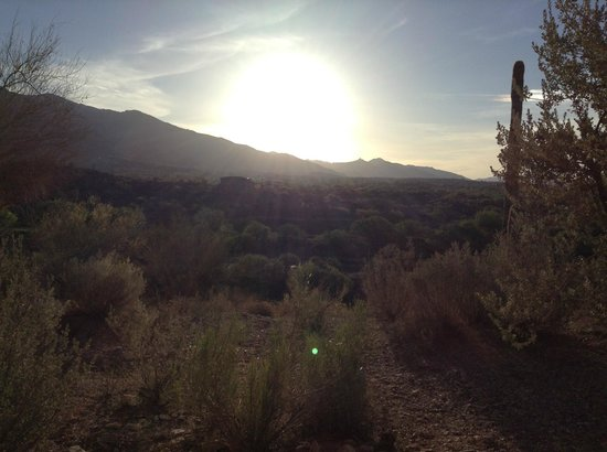 Westin La Paloma Resort and Spa: Waking up from a restful somber, the morning view from my back door. Amazing!!