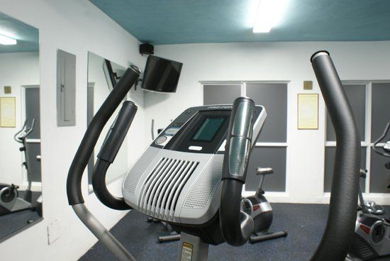 Altamont Court Hotel Kingston : Modern Gym