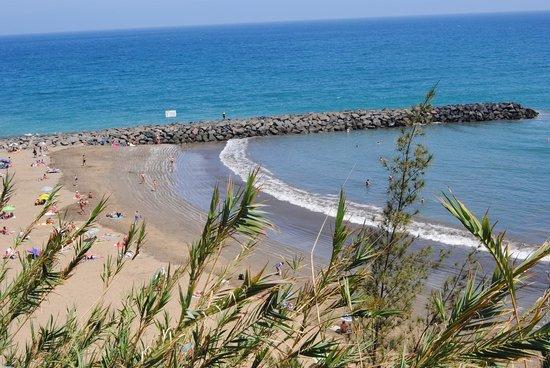 IFA Continental Hotel : playa del corralillo