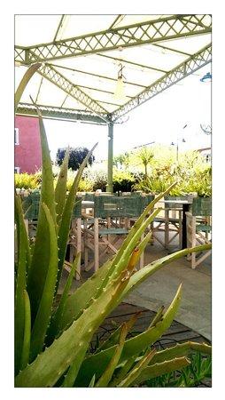Caffetteria il giardino forte dei marmi ristorante recensioni numero di telefono foto - Il giardino forte dei marmi ...