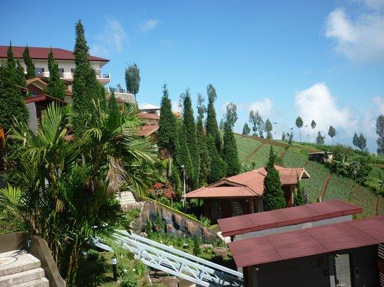 Bromo Cottages Hotel: vue des étages inférieurs