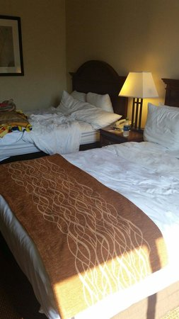Comfort Inn Conference Center: Double bed