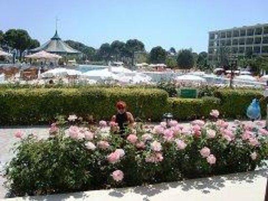 Venezia Palace Deluxe Resort Hotel: Местность отеля