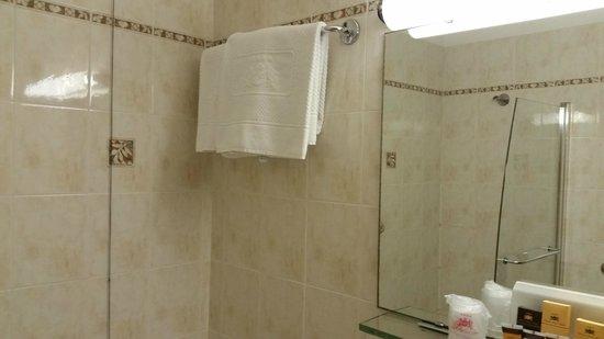 Windsor Hotel Milano: bagno