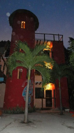 Tribu Hostel : Grounds at night