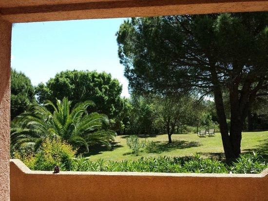 Les Pins de Santa Giulia : Vue de notre terrasse...